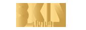 Skin Aesthetics Logo